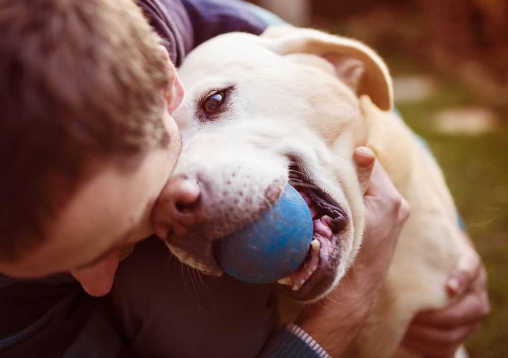 Oklahoma dog bite lawyer